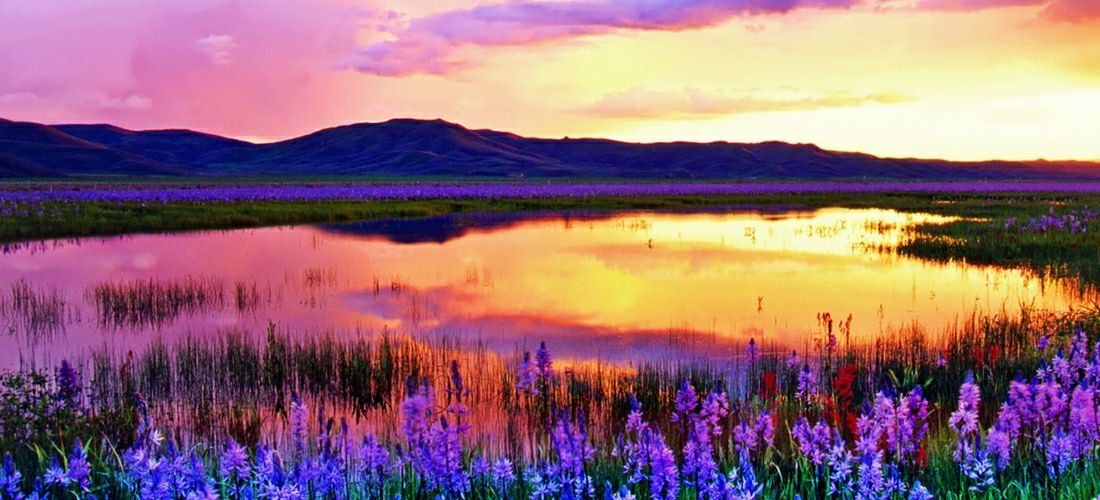 State of idaho travel information usa travel guides state parks