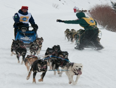 The Stage Stop Sled dog Race