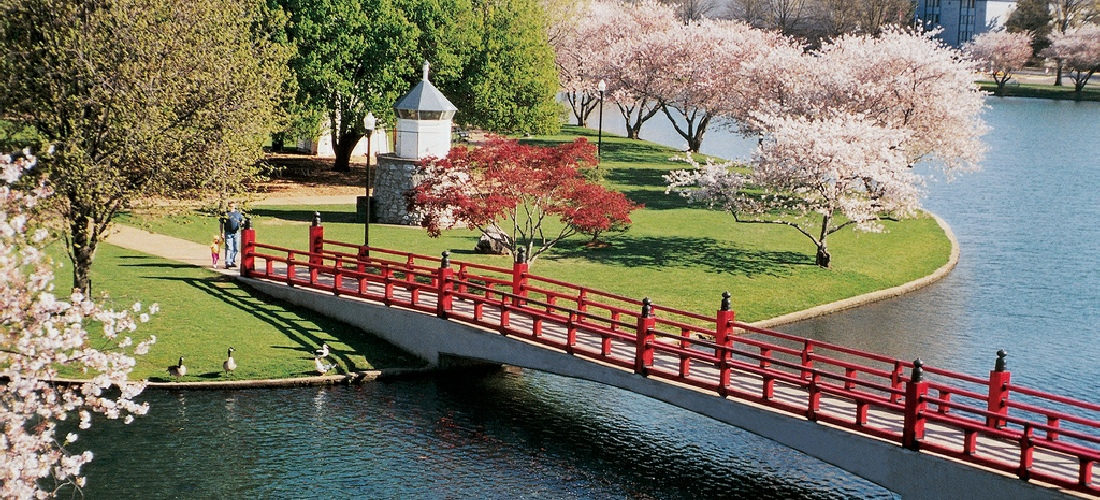 This image shows the iconic red bridge and cherry trees Japan has given Huntsville.